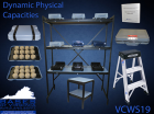 VCWS 19 Dynamic Physical Capacities